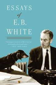 the best books on favourite essay collections five books essays of eb white