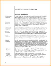 9 Example Resume Summary Precis Format
