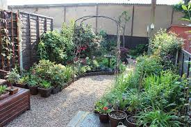 small garden without grass