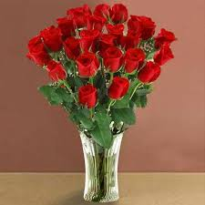 long stem red roses valentine s day gifts to pittsburgh