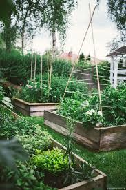 David Burke Kitchen The Garden 2787 Best Images About Potager Kitchen Garden On Pinterest