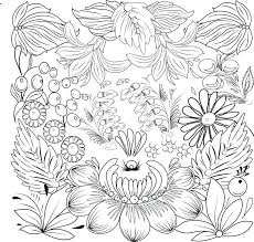 coloring book leaves drawn flowers and for stock vector ilration of colour pattern secret garden