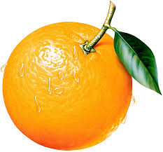 orange clipart png. view full size ? orange clipart png