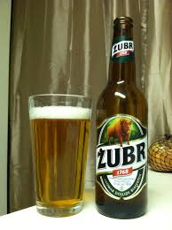 Image result for zubr beer
