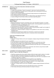 Strategy Senior Manager Resume Samples Velvet Jobs