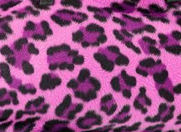 leopard print wallpaper best car 2016