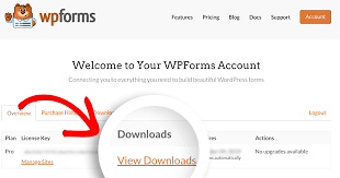 How to Install and Activate the WPForms Plugin