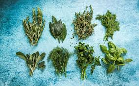 Herbs 101 An A Z List Of Herbs For A Healthier You Alive