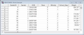 Sample Excel Files Importing Excel Files Into Sas Sas Tutorials Libguides