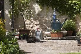choosing romantic country french garden cool country french garden landscaping design ideas for backyard of