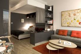 Modern Apartment Living Room Ideas Painting Best Inspiration Design