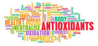 """Résultat de recherche d'images pour """"anti oxydants"""""""