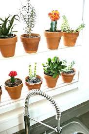 window garden diy hanging window herb garden herb garden hanging kitchen herb garden hanging window herb window sill herb garden diy diy window garden from