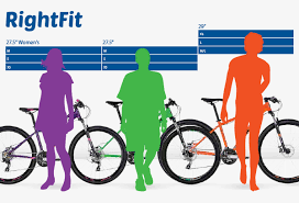 Rightfit Avanti Bikes