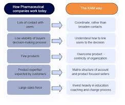 The Road To Pharmaceutical Key Account Management Kam
