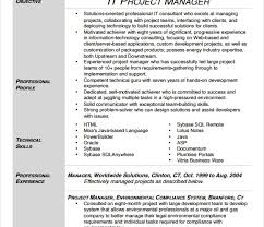 it project manager resume template resume samples for project managers