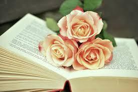 """Résultat de recherche d'images pour """"Rose sur un livre"""""""