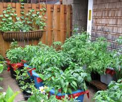 ... Large-size of Great Images About Vegetable Garden Design On Vegetable  Gardencontainer Ideascadagucom Recycled Container ...