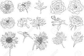 Te 100 Bloemen Tekening Kleurplaat Bloemen Tropicalweather