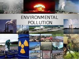environmental pollution essay edu essay what is environmental pollution essay