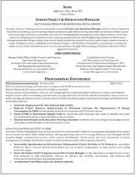 Writing A Professional Resume Write A Professional Resume Enderrealtyparkco 4