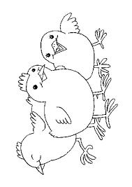 Kippen Kleurplaten