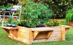 garden beds. raised bed and seats or benches garden beds