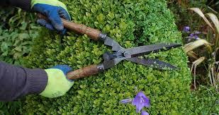 garden maintenance service. Beautiful Garden Garden Maintenance Services With Service R