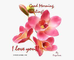 romantic good morning husband hd png