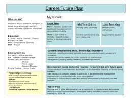 southern nina cte business finance information technology 3 03 career plan sample