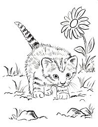 Small Picture Kitten Coloring Pages Best Coloring Pages For Kids