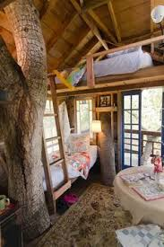 inside of simple tree houses
