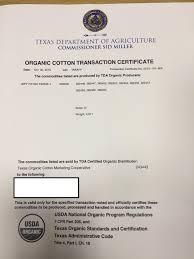 Organic Cotton Foam Core Mattress No Fire Retardant Soft And