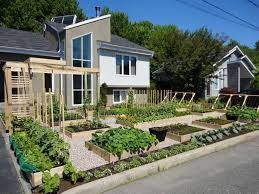 Small Picture Front Yard Vegetable Garden Design 38 Homes That Turned Their