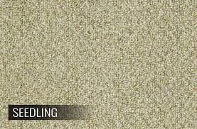 shaw natural path berber carpeting for outdoors