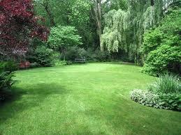 Backyard Landscaping  Backyard Fence IdeasLawn Free Backyard