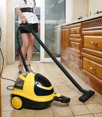 ing a steam cleaner the importance