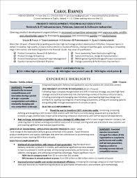 Executive Level Resume Award Winning Executive Resume Examples