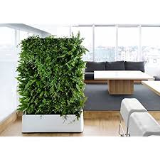 INDOOR Waterproof 12 Pocket Vertical Living Green Wall Planter. by  Delectable Garden