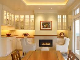 lighting for the home. traditional dining room accented with led lighting environmentallightsu0027 20m over 65 ft for the home 0