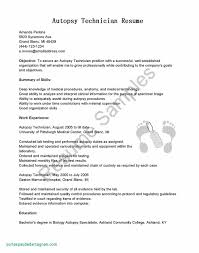 Hr Resume Sample Fresh Professional Resume Examples Awesome Resume ...