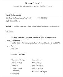 Summer Internship Resume Internship Resume Template