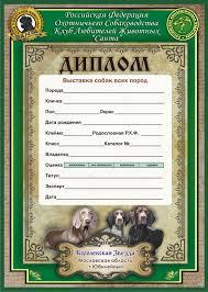 Удалённая работа Работа фрилансера gorodecki anton gorodecki  Диплом для выставки собак 01