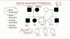 Pedigree Analysis Methods Dominant Recessive And X Linked Pedigree