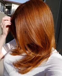 Light Auburn Copper Hair Strawberry Blonde Hair My Epic Journey Part 3 The Copper