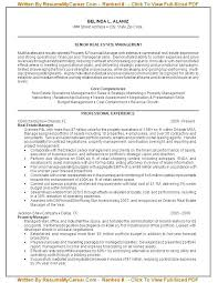 Executive Resume Writing Best 2917 Resume Writers Nyc Resume Services Professional Professional Resume