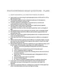 photosynthesis essay plans document in a level and ib biology preview of page 1 photosynthesis essay