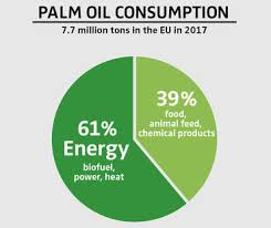 Food Company Product Tree Diagram Palm Oil Deforestation For Everyday Products Rainforest