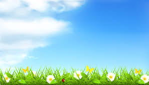 grass and flowers background.  Flowers Summer With Flowers Backgrounds Intended Grass And Flowers Background F