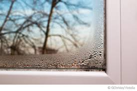 Elegant Schimmel Am Fenster ...